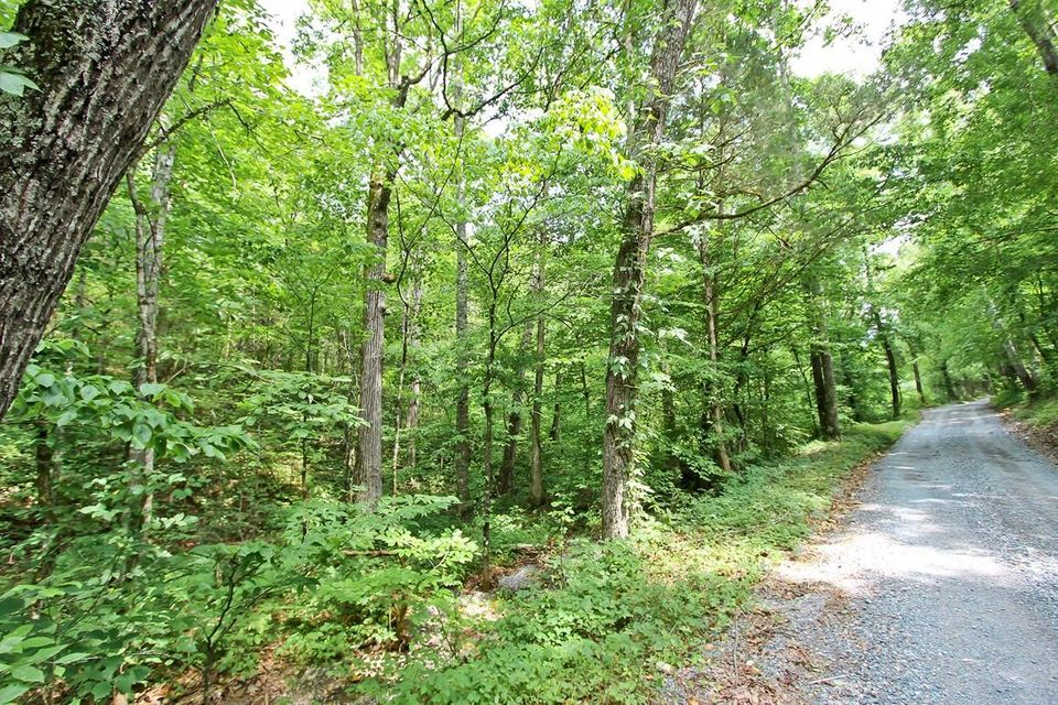 Land for Sale at 27 Acres Lonesome Pine Road Bybee, Tennessee 37713 United States