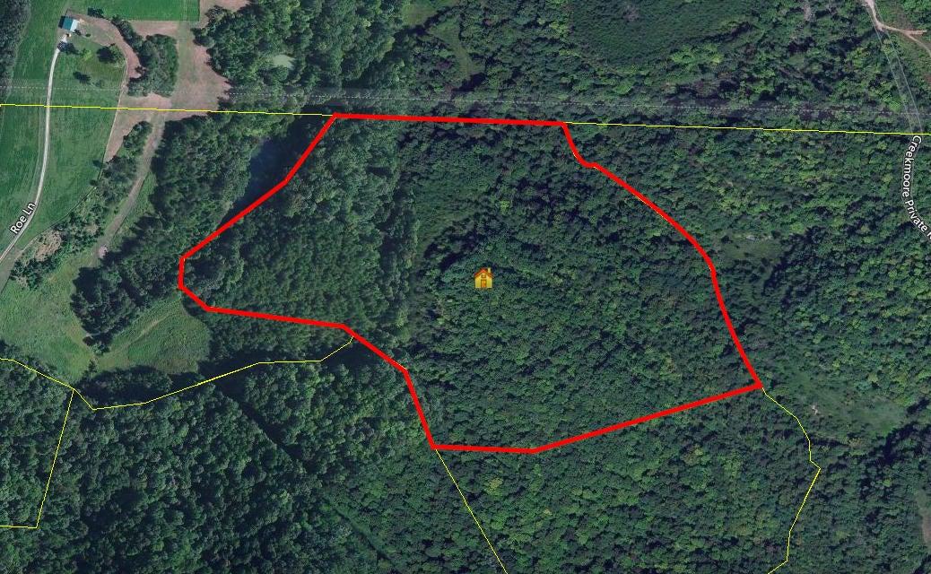 土地 为 销售 在 Tn-Ky State Line Winfield, 田纳西州 37892 美国