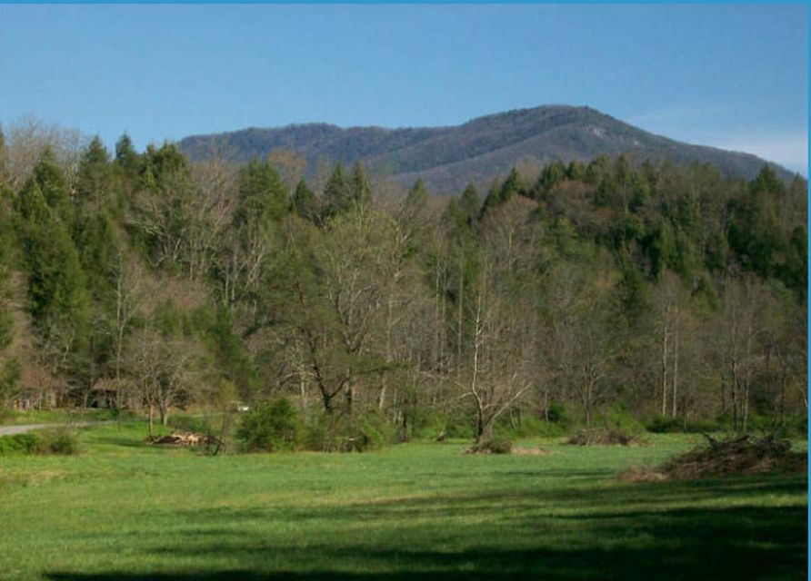 Land for Sale at Parkway East Gatlinburg, Tennessee 37738 United States