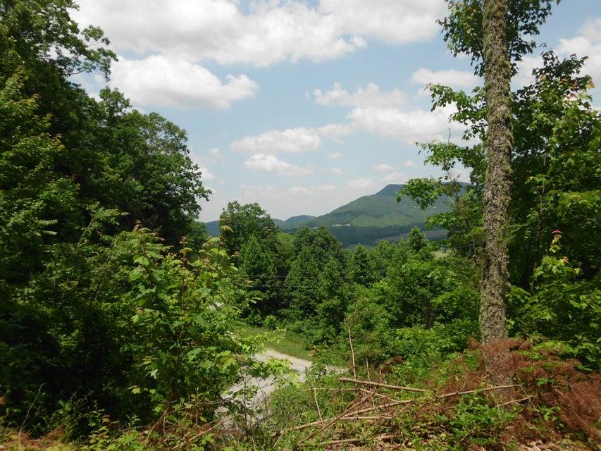 Terrain pour l Vente à Lot 17 Cherokee Winds Drive Lot 17 Cherokee Winds Drive Tellico Plains, Tennessee 37385 États-Unis