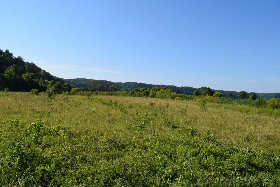Land for Sale at Shady Road Bybee, Tennessee 37713 United States
