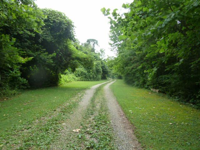 Land for Sale at 704 Irwin Road Powell, Tennessee 37849 United States