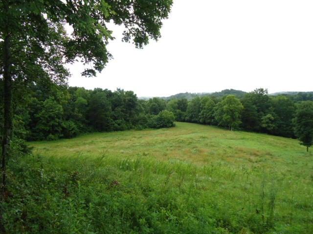 土地 为 销售 在 21.34 Acre Baptist Ridge Hwy Hilham, 田纳西州 38568 美国