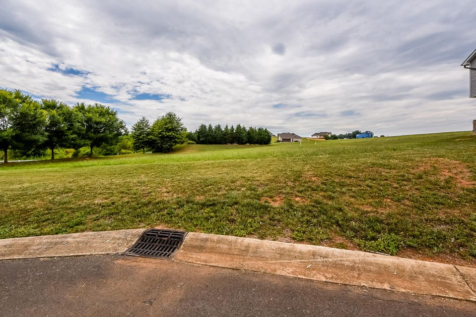 Additional photo for property listing at Lot 38 Vista Meadows Lane Lot 38 Vista Meadows Lane 赛维尔维尔, 田纳西州 37876 美国