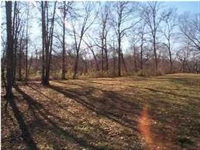 Additional photo for property listing at 156 Tree Frog Lane 156 Tree Frog Lane Benton, Tennessee 37307 United States