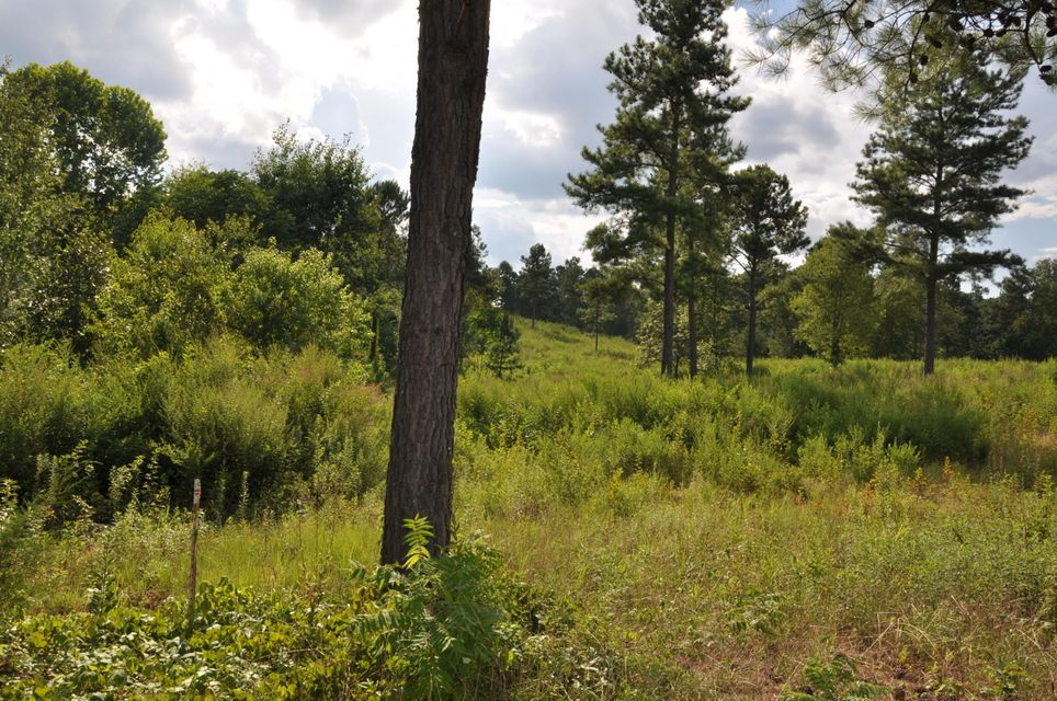 Земля для того Продажа на Ward Road Ward Road Loudon, Теннесси 37774 Соединенные Штаты