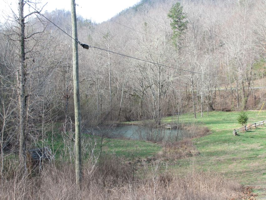 Additional photo for property listing at Lick Creek Lick Creek 普莱恩斯, 田纳西州 37385 美国