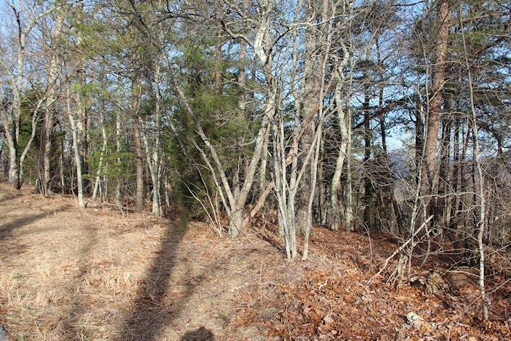 Additional photo for property listing at Shell Mountain Road Shell Mountain Road Sevierville, Теннесси 37876 Соединенные Штаты