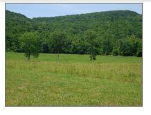 土地 为 销售 在 W Of Means Livingston, 田纳西州 38570 美国