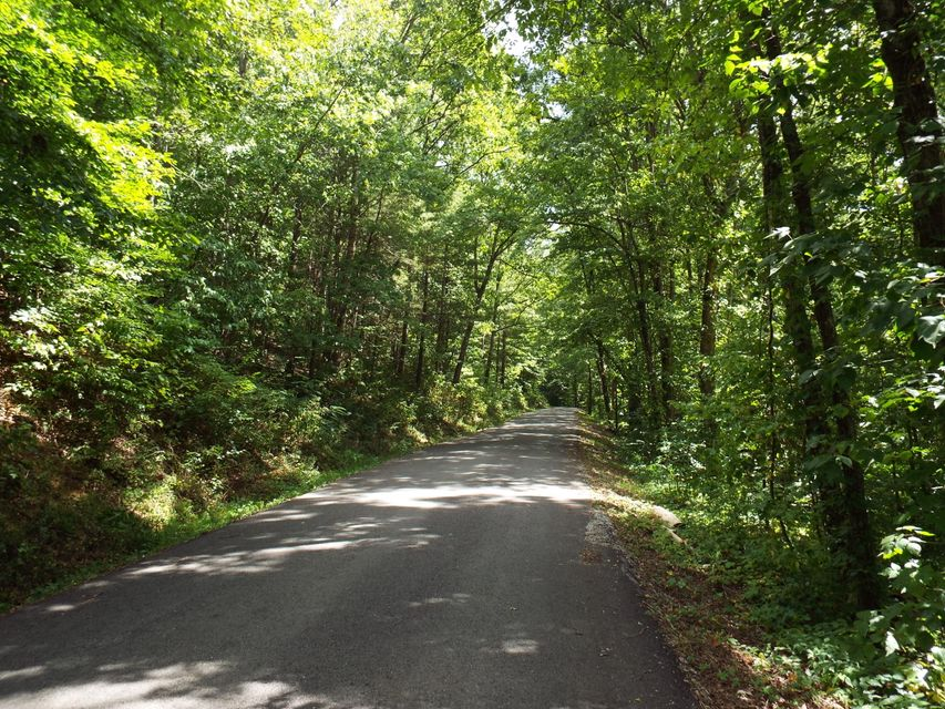 Land for Sale at Old Gobey Road Wartburg, Tennessee 37887 United States