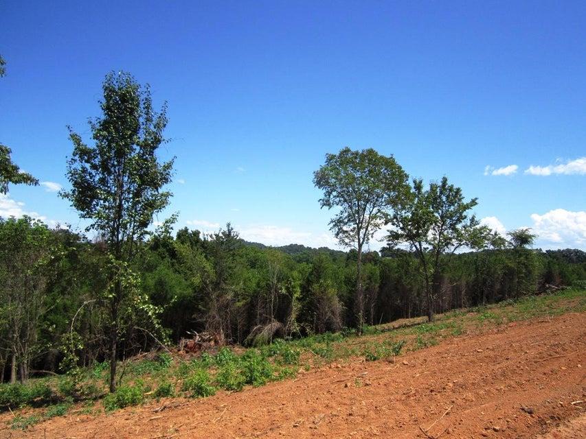 土地,用地 为 销售 在 Lot 22- Mountain Vista Trail Road Lot 22- Mountain Vista Trail Road 丹德里奇, 田纳西州 37725 美国