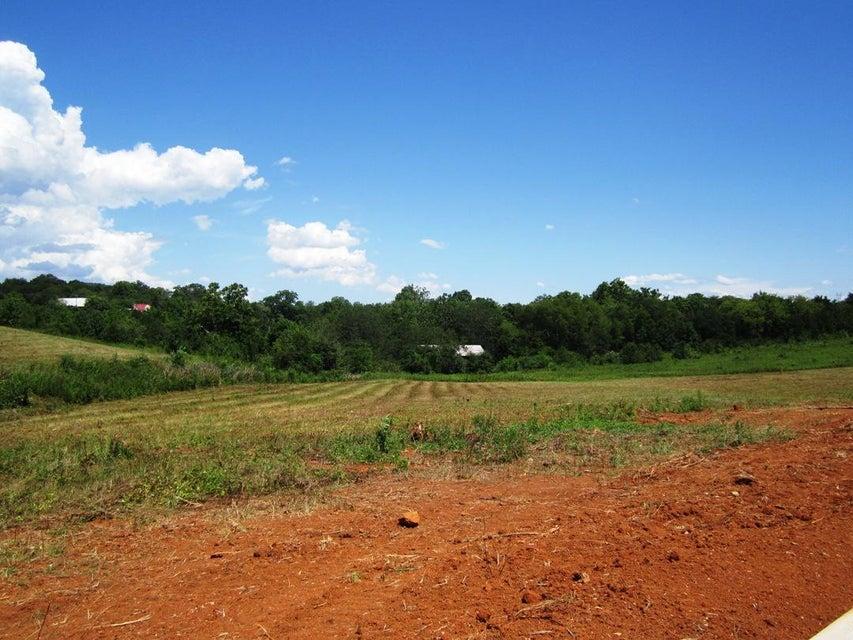 土地,用地 为 销售 在 Lot 17- Mountain Vista Trail Road Lot 17- Mountain Vista Trail Road 丹德里奇, 田纳西州 37725 美国