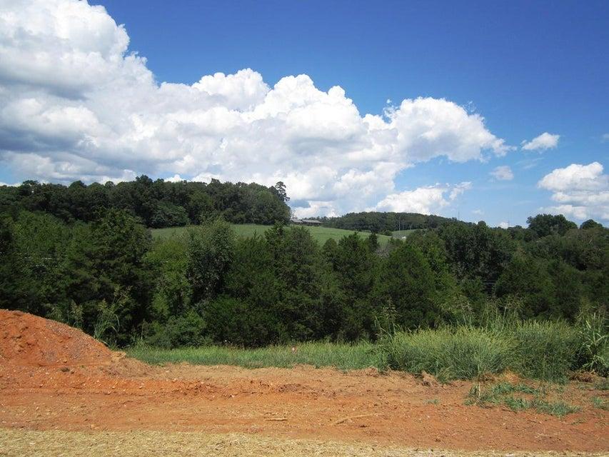 土地,用地 为 销售 在 Lot 24- Mountain Vista Trail Road Lot 24- Mountain Vista Trail Road 丹德里奇, 田纳西州 37725 美国