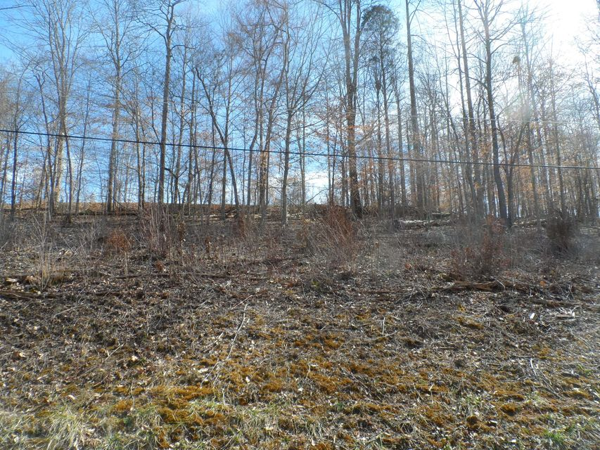 Additional photo for property listing at Lot 159 Yoakum Hollow Road Lot 159 Yoakum Hollow Road Jacksboro, Tennessee 37757 États-Unis