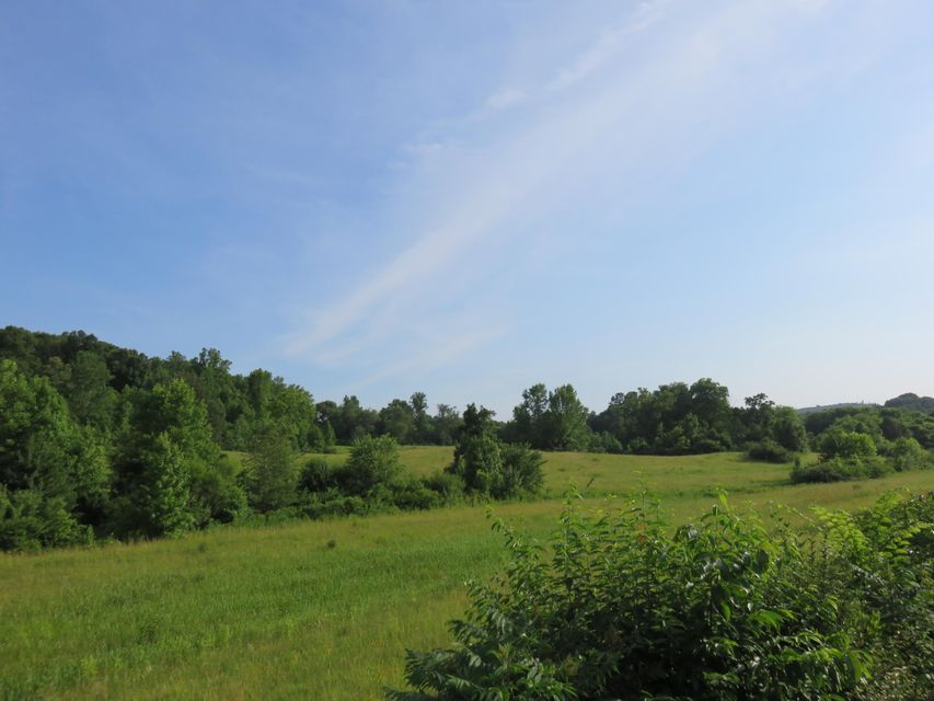 Land for Sale at County Road 230 Niota, Tennessee 37826 United States