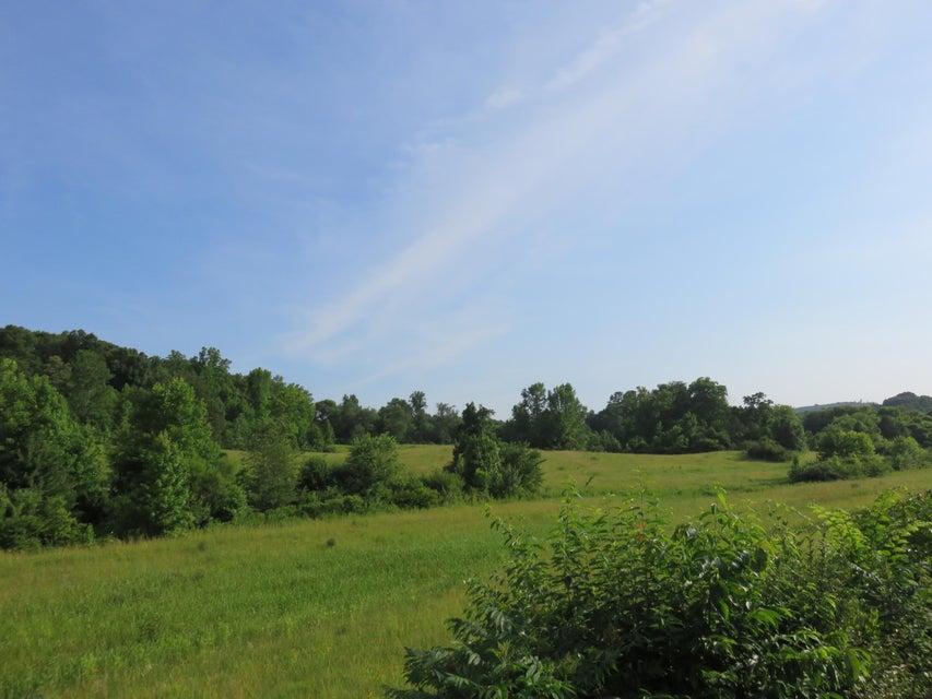 土地 为 销售 在 County Road 230 Niota, 田纳西州 37826 美国