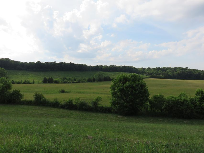 Land for Sale at 248 Acres Highway 68 Niota, Tennessee 37826 United States