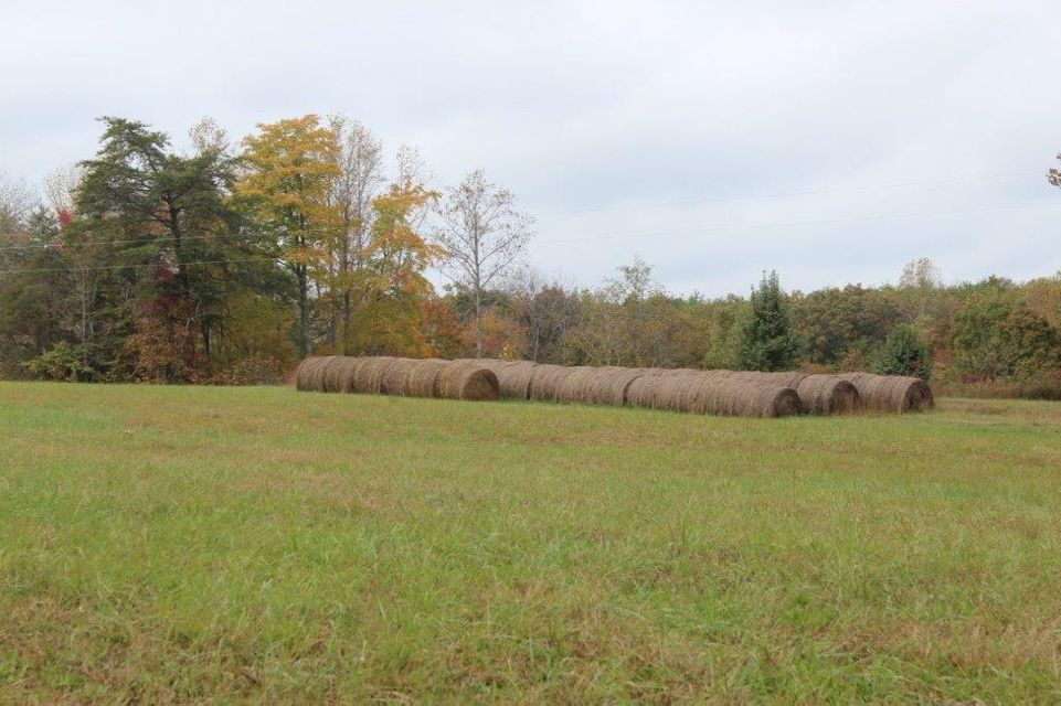 Land for Sale at 46.76 Ac Pages Lane Smithville, Tennessee 37166 United States