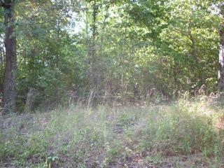 Additional photo for property listing at Lot #76 E Ridge Road Lot #76 E Ridge Road Spring City, Теннесси 37381 Соединенные Штаты