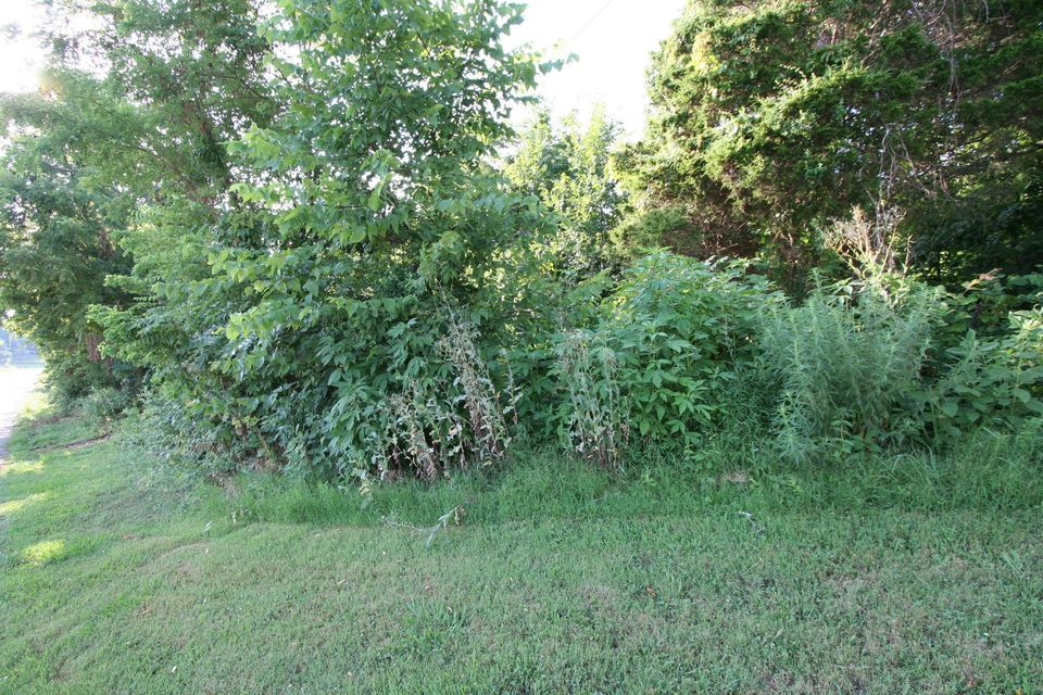 土地,用地 为 销售 在 Wallace Road Wallace Road Luttrell, 田纳西州 37779 美国