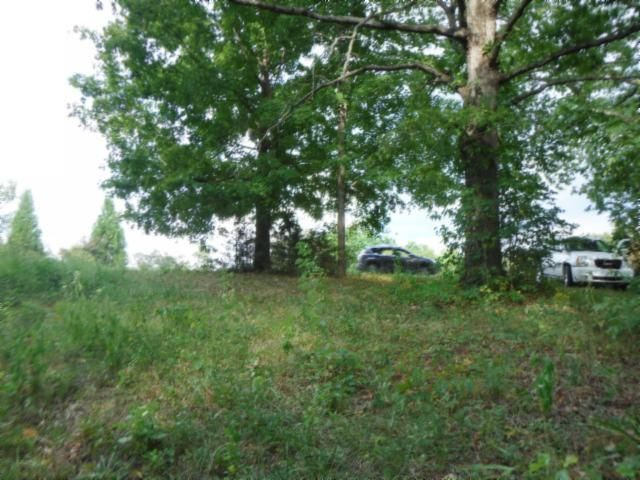 Terrain pour l Vente à 6.71 Ac. Willow Grove Hwy Allons, Tennessee 38541 États-Unis