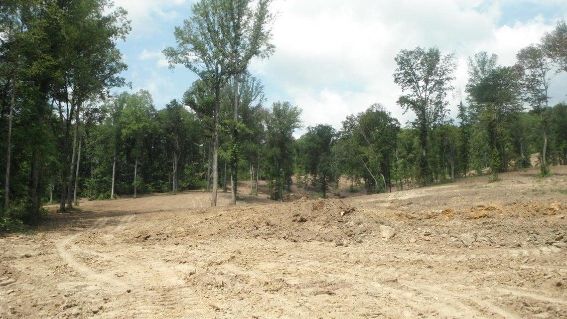 土地 为 销售 在 Millertown Pike Corryton, 田纳西州 37721 美国