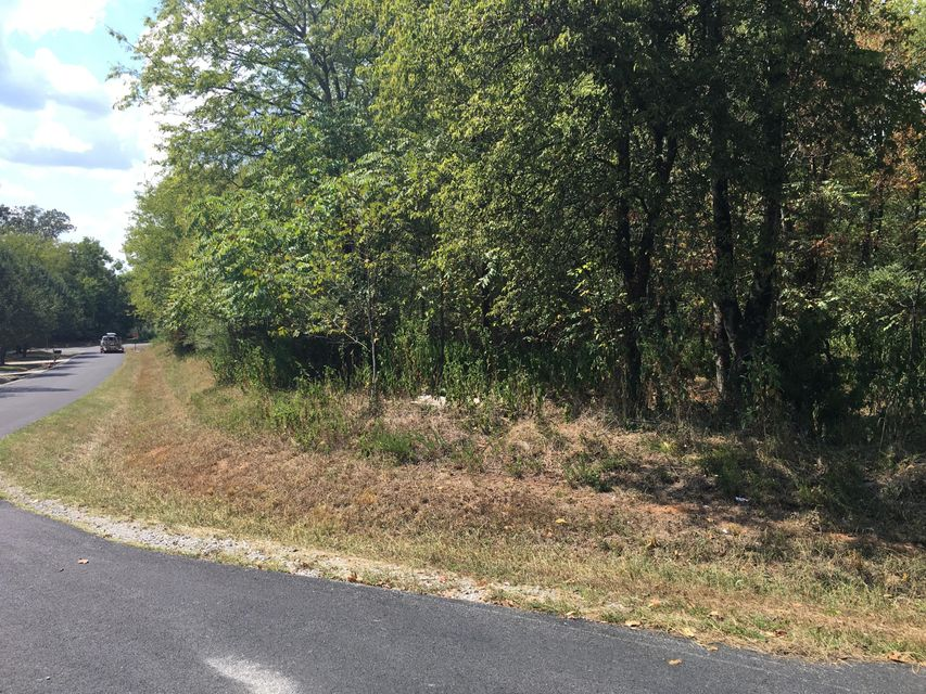 Additional photo for property listing at Lot 6 Kanati Tr  Vonore, Tennessee 37885 États-Unis