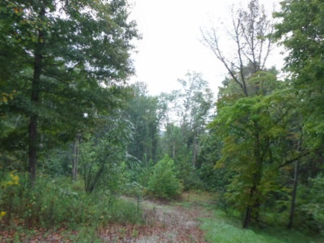 Land for Sale at 270 Guy Watkins Road Burkesville, Kentucky 42717 United States
