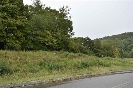 Land for Sale at 103 Elm Street 103 Elm Street Decatur, Tennessee 37322 United States