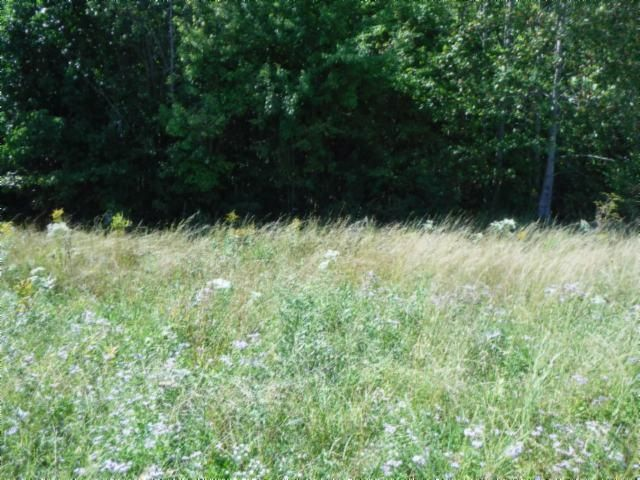Land for Sale at Lot 1,2 Airport Road/Lot 10 Austin Circle Livingston, Tennessee 38570 United States