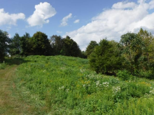 Land for Sale at 10.90 Ac. Ford Road Baxter, Tennessee 38544 United States