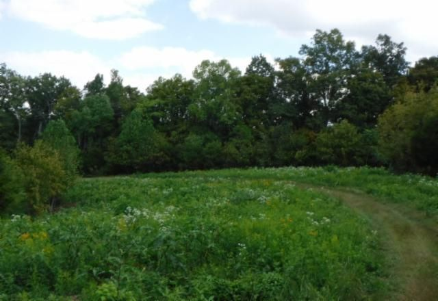 Land for Sale at 16.40 Ac. Ford Road Baxter, Tennessee 38544 United States