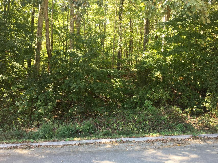 Additional photo for property listing at Lot 5 Clark Lane Lot 5 Clark Lane Powell, Tennessee 37849 États-Unis