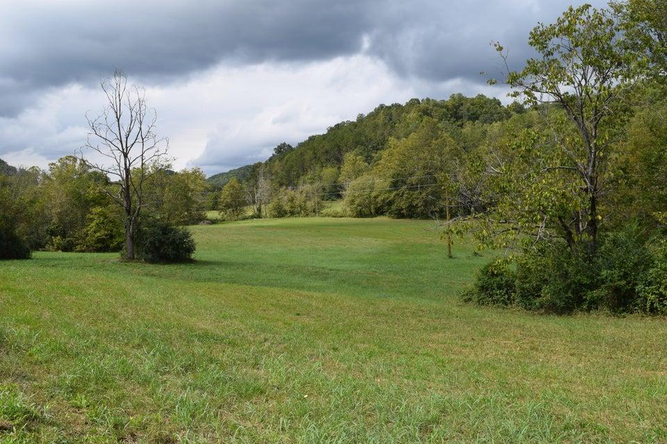 土地 为 销售 在 1039 Spruce Pine Road Rogersville, 田纳西州 37857 美国