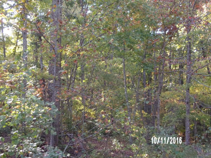 Additional photo for property listing at Lollar Place Lollar Place Monterey, Tennessee 38574 United States