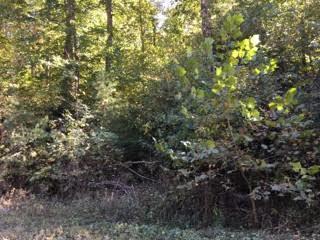 Terrain pour l Vente à Wolf Branch Road Crawford, Tennessee 38554 États-Unis