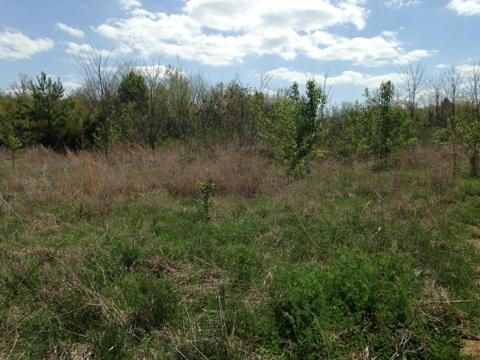 Additional photo for property listing at Highway 411  Madisonville, Tennessee 37354 United States
