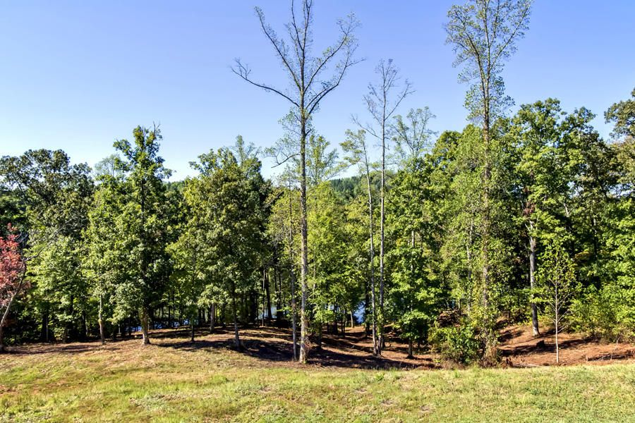 Additional photo for property listing at 124 Shiners Bluff Drive  Madisonville, Tennessee 37354 United States