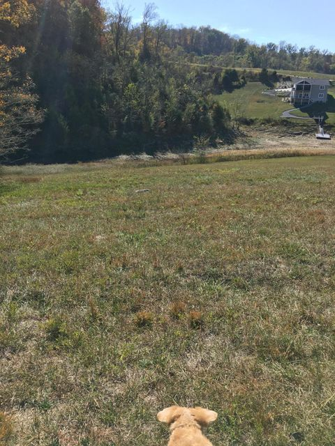 Additional photo for property listing at Regina Point Regina Point Sharps Chapel, Tennessee 37866 États-Unis