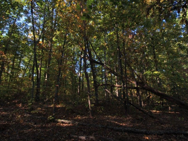 Additional photo for property listing at Lot 40 Country Way Road Lot 40 Country Way Road Vonore, Tennessee 37885 United States
