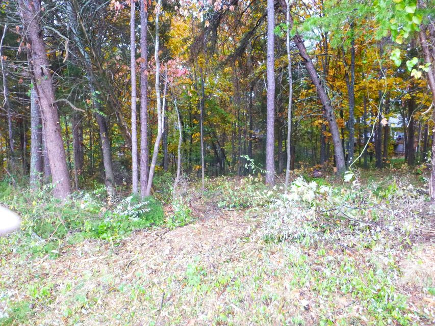 Additional photo for property listing at 204 Okema Trace 204 Okema Trace Loudon, Tennessee 37774 Estados Unidos