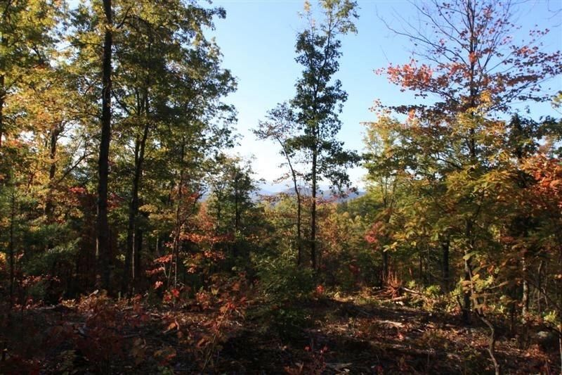 Additional photo for property listing at Lot #128 Bluff Mountain Road Lot #128 Bluff Mountain Road Sevierville, Теннесси 37876 Соединенные Штаты