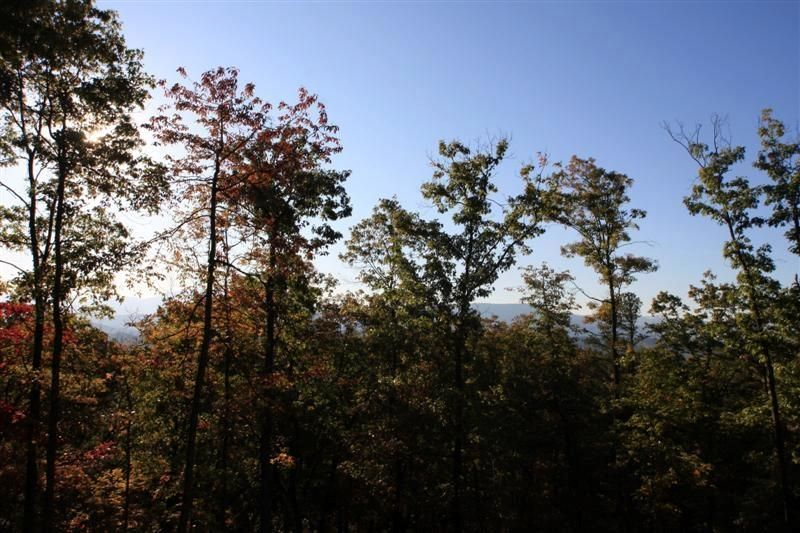 Additional photo for property listing at Bluff Mountain Road Bluff Mountain Road 赛维尔维尔, 田纳西州 37876 美国