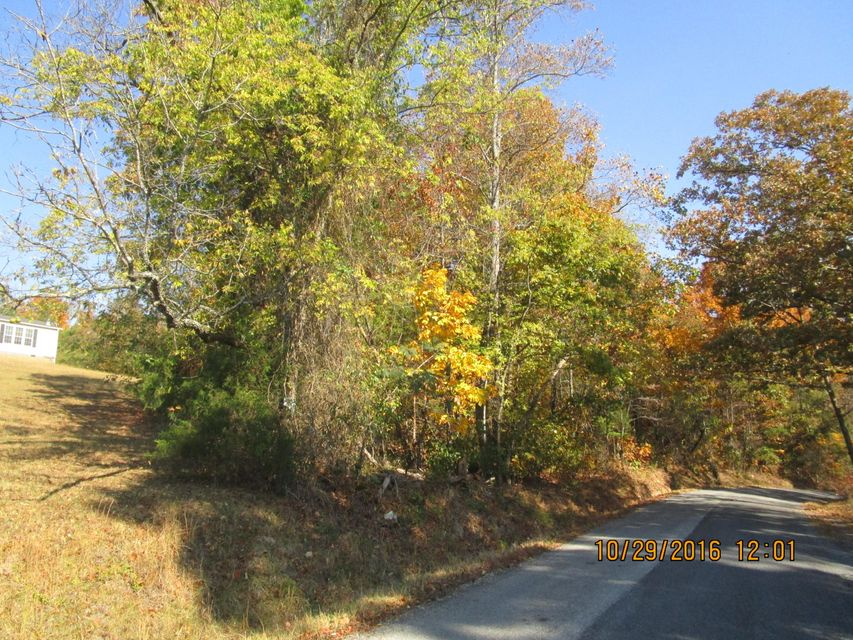 Land for Sale at Burketts Chapel Road Burketts Chapel Road Decatur, Tennessee 37322 United States