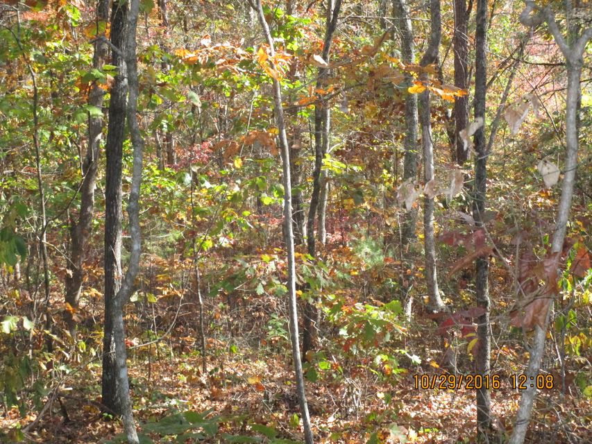 Additional photo for property listing at Burketts Chapel Road Burketts Chapel Road Decatur, Tennessee 37322 United States