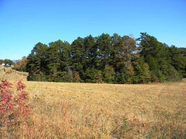 Additional photo for property listing at Lot 2 Parsonage Road  White Pine, Tennessee 37890 Estados Unidos