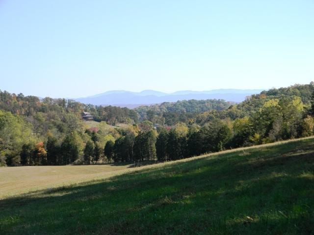 土地,用地 为 销售 在 Parsonage Road Parsonage Road White Pine, 田纳西州 37890 美国