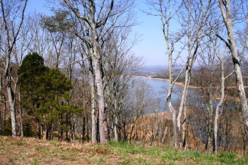 Additional photo for property listing at 2017 Turners Landing 2017 Turners Landing Russellville, Tennessee 37860 United States