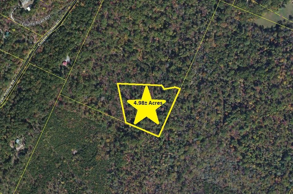 Land for Sale at 500 Cooper Hollow Road Coker Creek, Tennessee 37314 United States