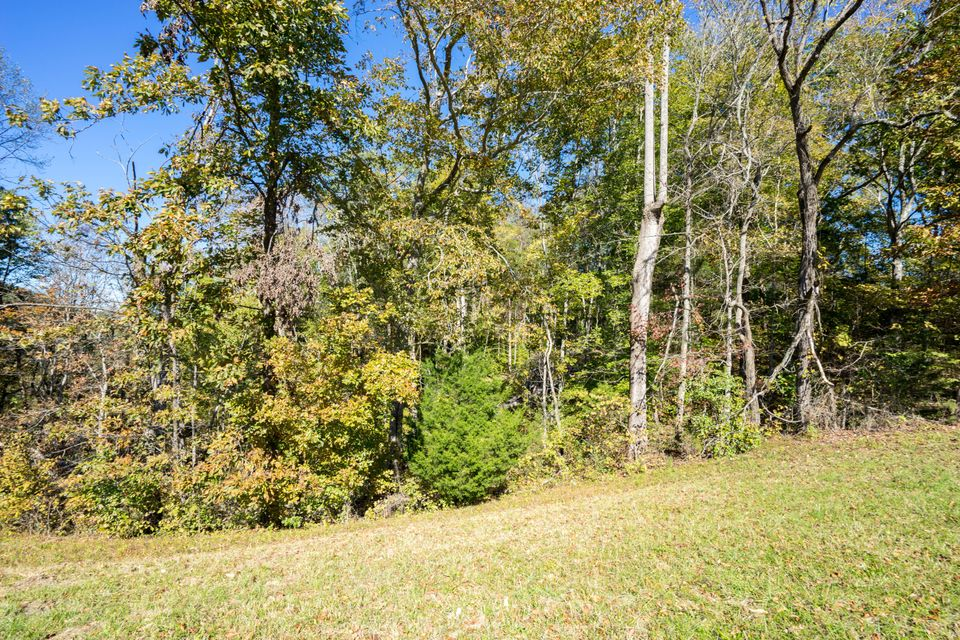 Additional photo for property listing at Lot 4 Loyston Estate Lots Lot 4 Loyston Estate Lots Knoxville, Теннесси 37938 Соединенные Штаты
